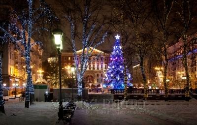 новогодняя елка в Москве фото