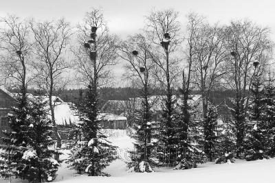русская деревня зимой фото