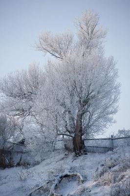 русская деревня, село Городня зимой