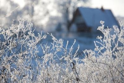 русская деревня зимой - мороз и иней, день чудесный!