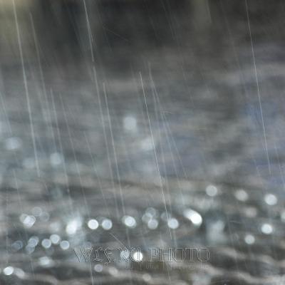 Как фотографировать дождь?