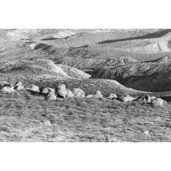 Долина шаров 4