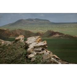 Вулканическая степь