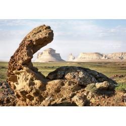 Каменный бронтозавр