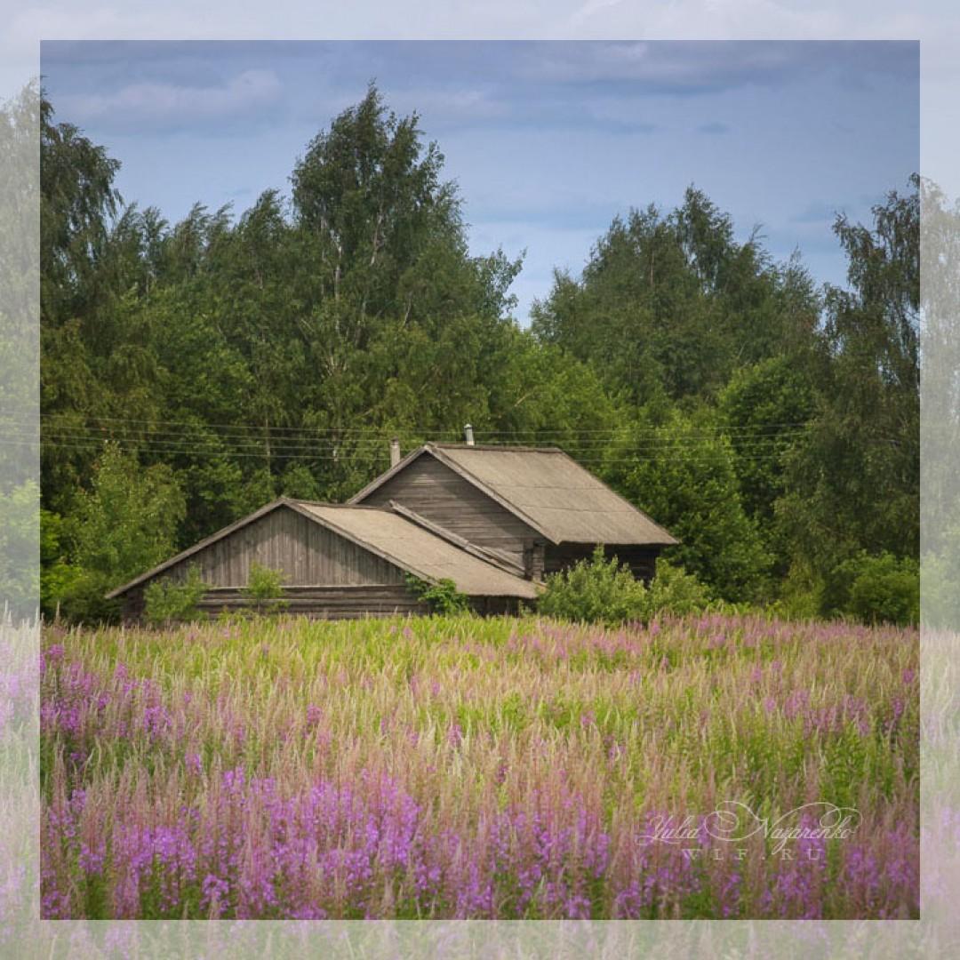12-14.06.2020 Фототур: Сельский пейзаж.