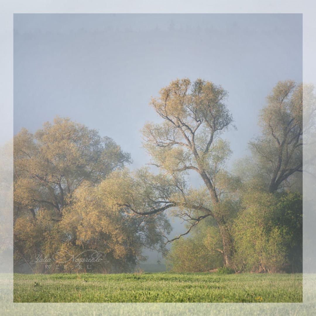 19.09.2021 Фототур: Вязьма: панорамы и пряники))