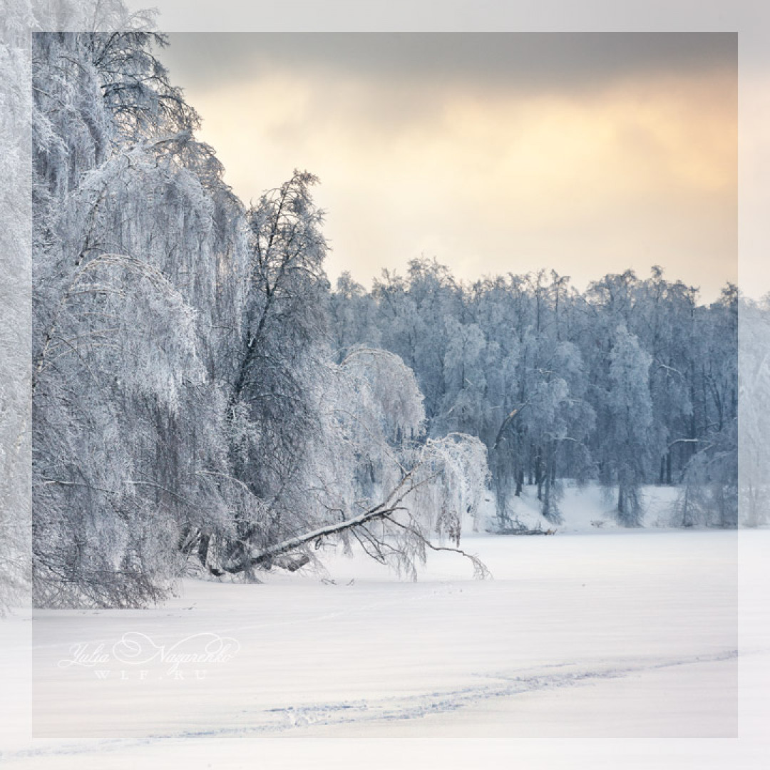 04.01.2021 Фототур: Зимний пейзаж.